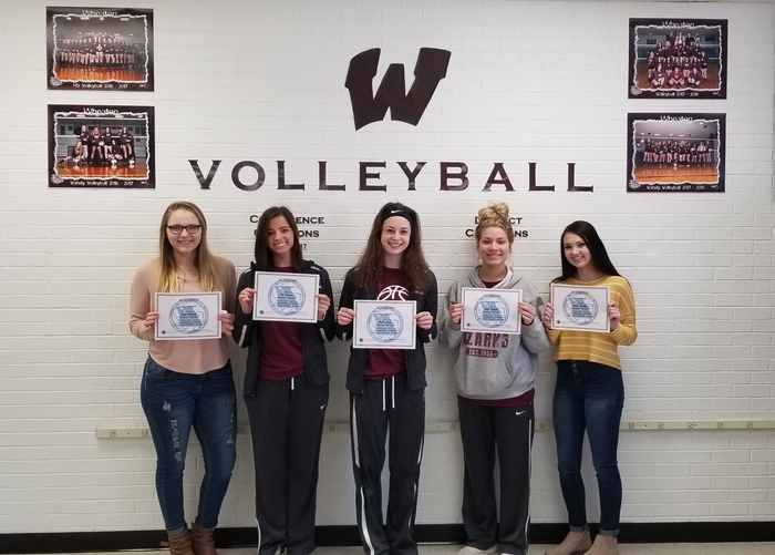 2018 Volleyball Academic All-State